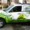 Bolthouse Car Graphics